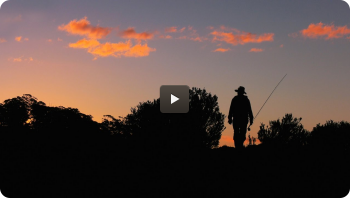 Australia - Tasmania Fly Fishing *Trailer* By Todd Moen
